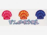 Glitter-/Folien-Bügelmotiv NS 273 - Florida, Größe ca. 17 x 6 cm