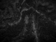 Pelzimitat - Web-Pelz HS3156-03, Breite ca. 150 cm, Farbe schwarz