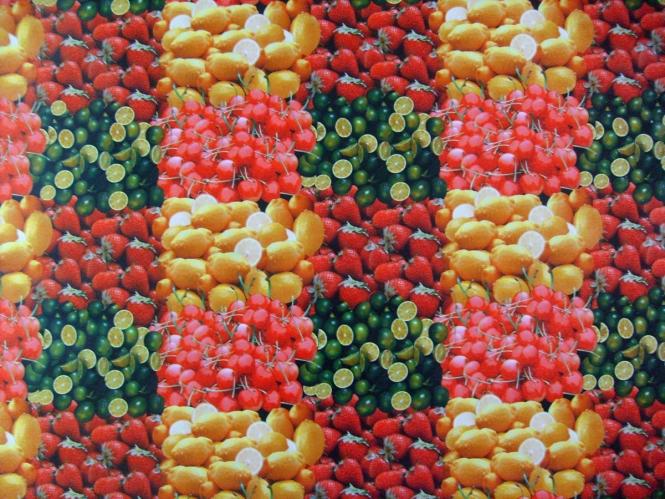 Wachstuch KT737 - Motiv Früchte