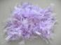 Federboa uni 7417-12, Farbe lila