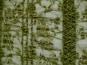 Spitzenstoff elastisch 464368 in oliv mit aufgenähten Pailletten - 2